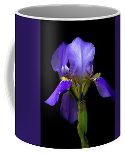 Simply Stunning Coffee Mug