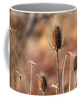 Coffee Mug featuring the photograph Simply Thistle by Rick Morgan