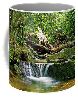 Coffee Mug featuring the photograph Sims Creek Waterfall by Meta Gatschenberger