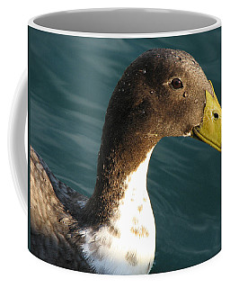 Sincere Glare Coffee Mug