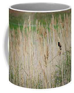 Coffee Mug featuring the photograph Sing For Spring by Bill Wakeley
