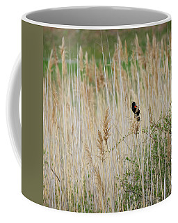 Coffee Mug featuring the photograph Sing For Spring Square by Bill Wakeley