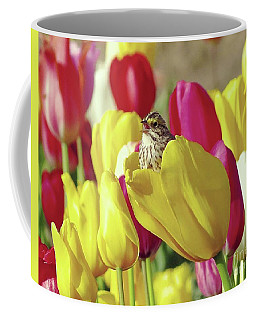 Singing In Tulips Coffee Mug