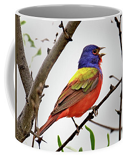 Singing Painted Bunting Coffee Mug