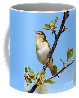 Singing Red-eyed Vireo Coffee Mug