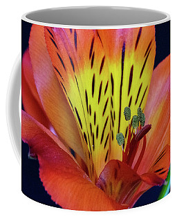 Single Alstroemeria Inca Flower-1 Coffee Mug