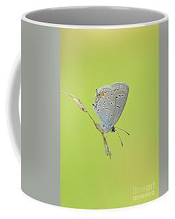 Single Blue Beauty Coffee Mug by Debbie Green