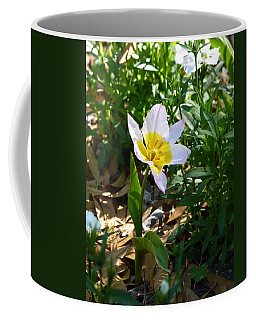 Coffee Mug featuring the photograph Single Flower - Simplify Series by Carla Parris