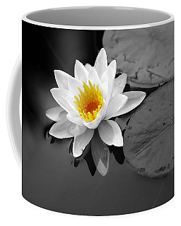 Coffee Mug featuring the photograph Single Lily by Shari Jardina