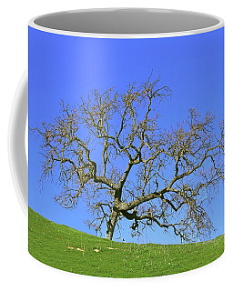 Coffee Mug featuring the photograph Single Oak Tree by Art Block Collections