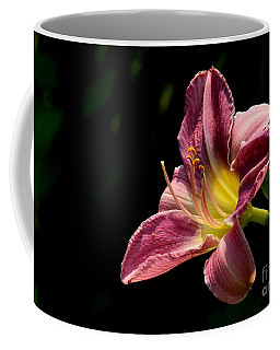 Single Pink Day Lily Coffee Mug