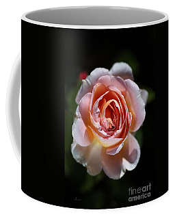 Single Romantic Rose  Coffee Mug