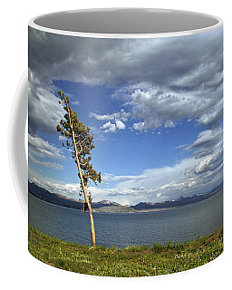 Single Tree - 365-359 Coffee Mug by Inge Riis McDonald