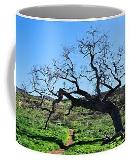 Single Tree Over Narrow Path Coffee Mug