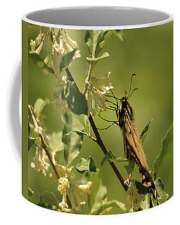 Coffee Mug featuring the photograph Sipping In The Shade by Susan Capuano