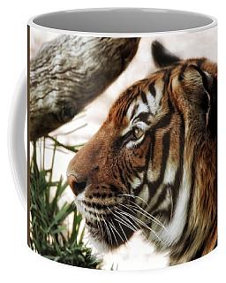 Coffee Mug featuring the photograph Sita Profile by Elaine Malott
