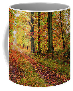 Coffee Mug featuring the photograph Site 6 by Dmytro Korol