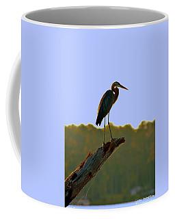 Sitting High On The Log Coffee Mug