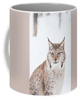 Coffee Mug featuring the photograph Sitting Pretty by Alex Lapidus