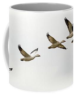 Six Snowgeese Flying Coffee Mug
