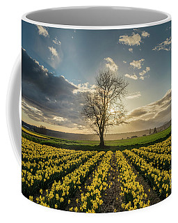 Coffee Mug featuring the photograph Skagit Daffodils Lone Tree  by Mike Reid