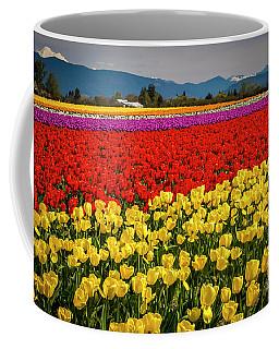 Skagit Valley Tulips  Coffee Mug