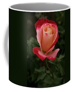 Skc 0435 Nature's Color Shading Coffee Mug by Sunil Kapadia