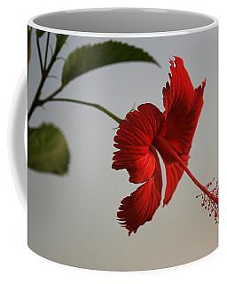 Skc 0450 Vibrant Hibiscus Coffee Mug