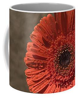 Skc 5127 The Heart Of The Gerbera Coffee Mug by Sunil Kapadia