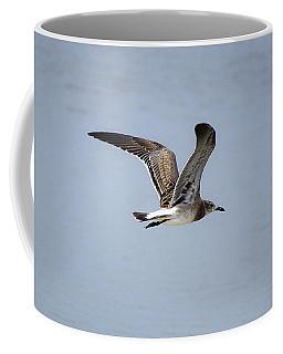 Skimming Seagull Coffee Mug