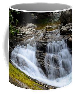Skinny Dip Falls Coffee Mug