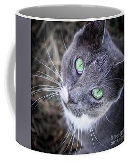 Skitty Green Eyes Coffee Mug