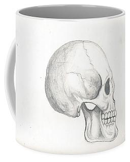 Skull Study Coffee Mug