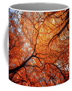 Sky Roots In Forest Red Coffee Mug
