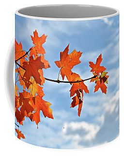 Sky View With Autumn Maple Leaves Coffee Mug