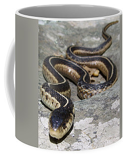 Skyline Drive Garter Coffee Mug