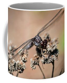Slaty Skimmer Watching You Coffee Mug