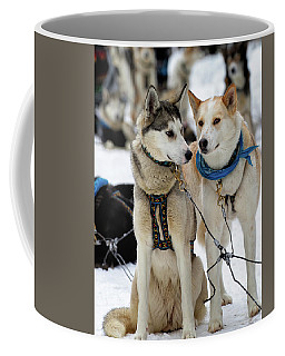 Sled Dogs Coffee Mug