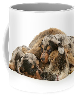 Sleep In Camouflage Coffee Mug