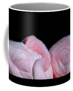 Coffee Mug featuring the photograph Sleeping Beauties 2 by Rebecca Cozart