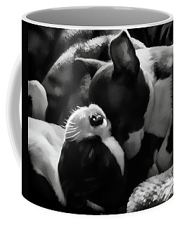 Sleeping Beauties - Boston Terriers Coffee Mug