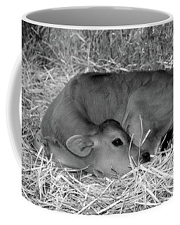 Sleeping Calf Coffee Mug