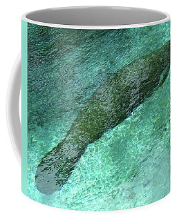 Sleeping Manatee In Three Sisters Springs Coffee Mug