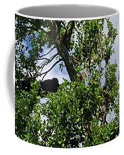 Coffee Mug featuring the photograph Sleeping Monkey 2 by Francesca Mackenney