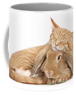 Sleeping On Bun Coffee Mug