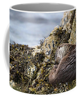 Sleeping Otter Coffee Mug