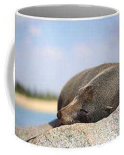 Sleepy Fur Seal Coffee Mug