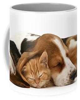 Sleepy Ginger Pals Coffee Mug