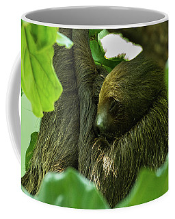 Sloth Sleeping Coffee Mug