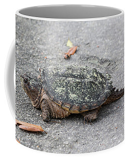 Slow Crossing 3 March 2018 Coffee Mug
